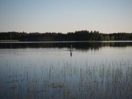 Peilityyni järvenpinta ja yksin koko jrävellä. Tämän takia tänne kaipaa aina uudelleen.
